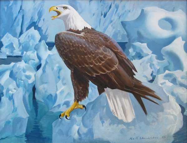 We buy Keith Shackleton Eagle sell artist Robert Perera Fine Art