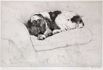 Cecil Aldin Dog Etching Valuation - sell artist Robert Perera Fine Art Ltd